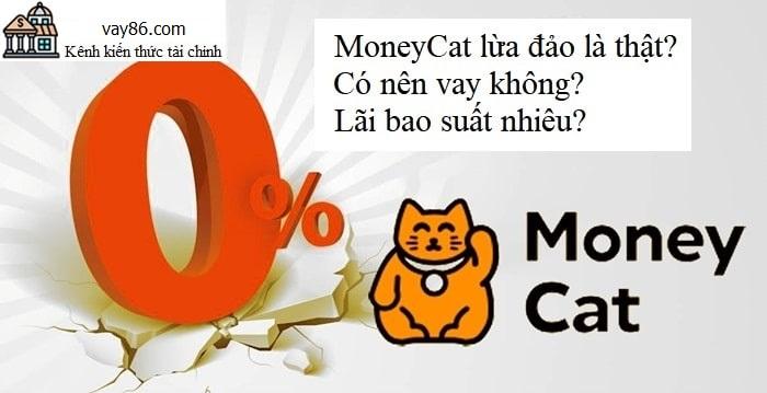 Moneycat lừa đảo hay chỉ là tin đồn? Có nên vay Moneycat không